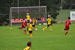 SG Flachgau Nord : U11: USV Elixhausen 3:2 (0:2)